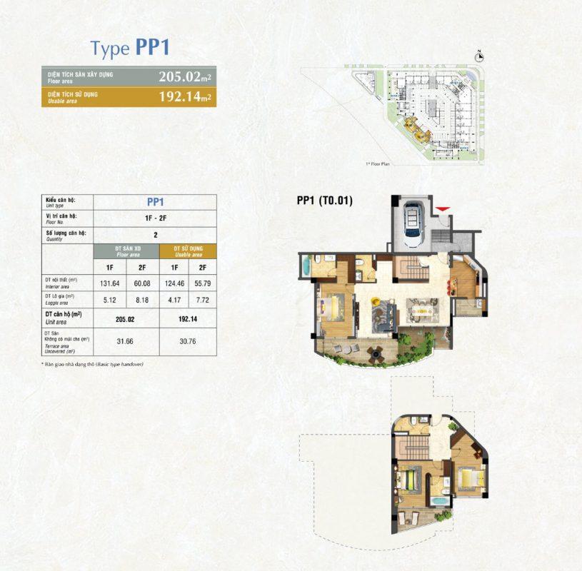 Kiểu PP1
